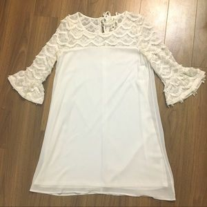 Pink Owl Lined Shift Dress Scallop Lace size S